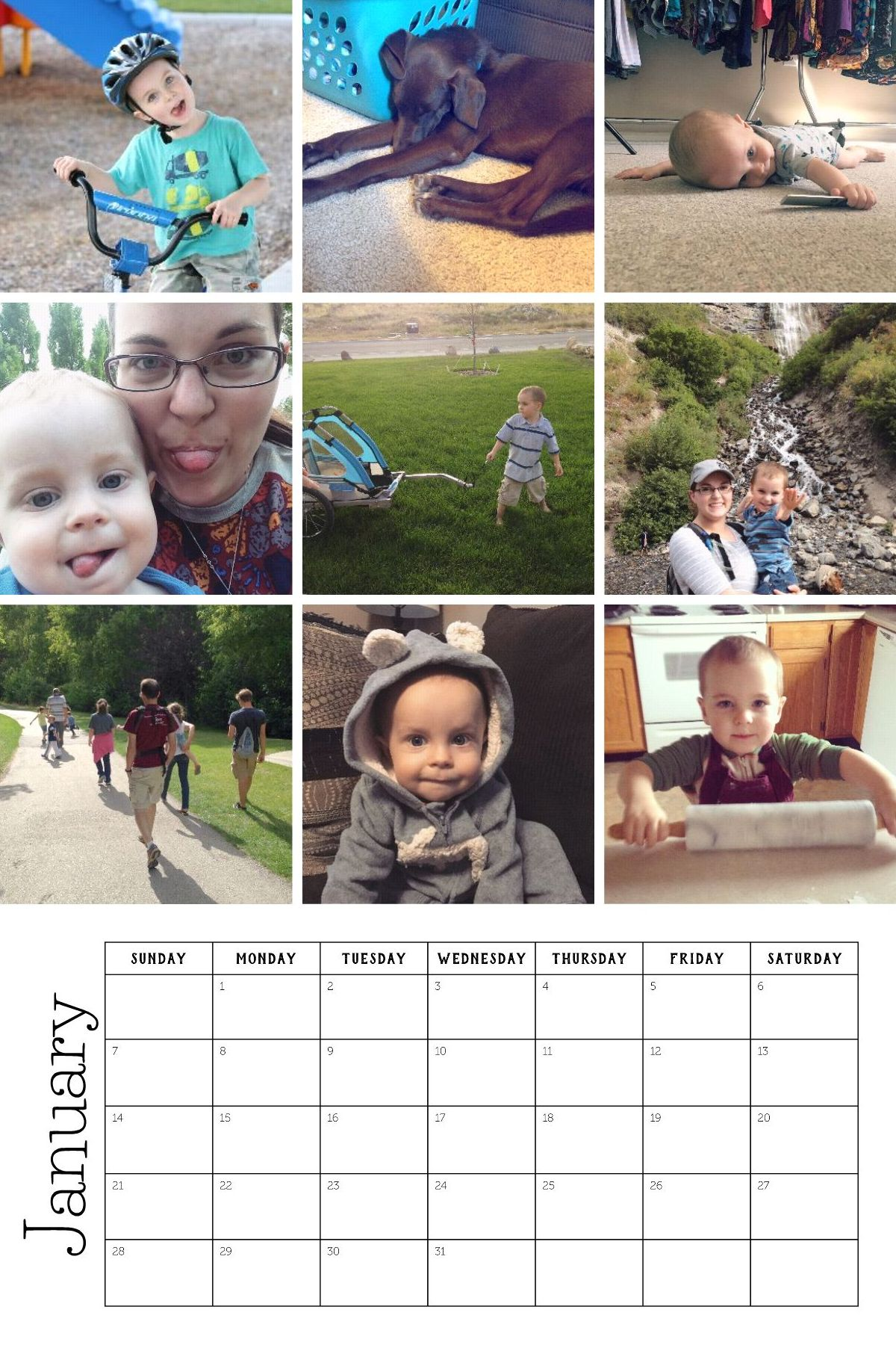 2018 Life in Pictures