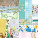 "Springtime by Lauren Hinds 2"" Border Strips"